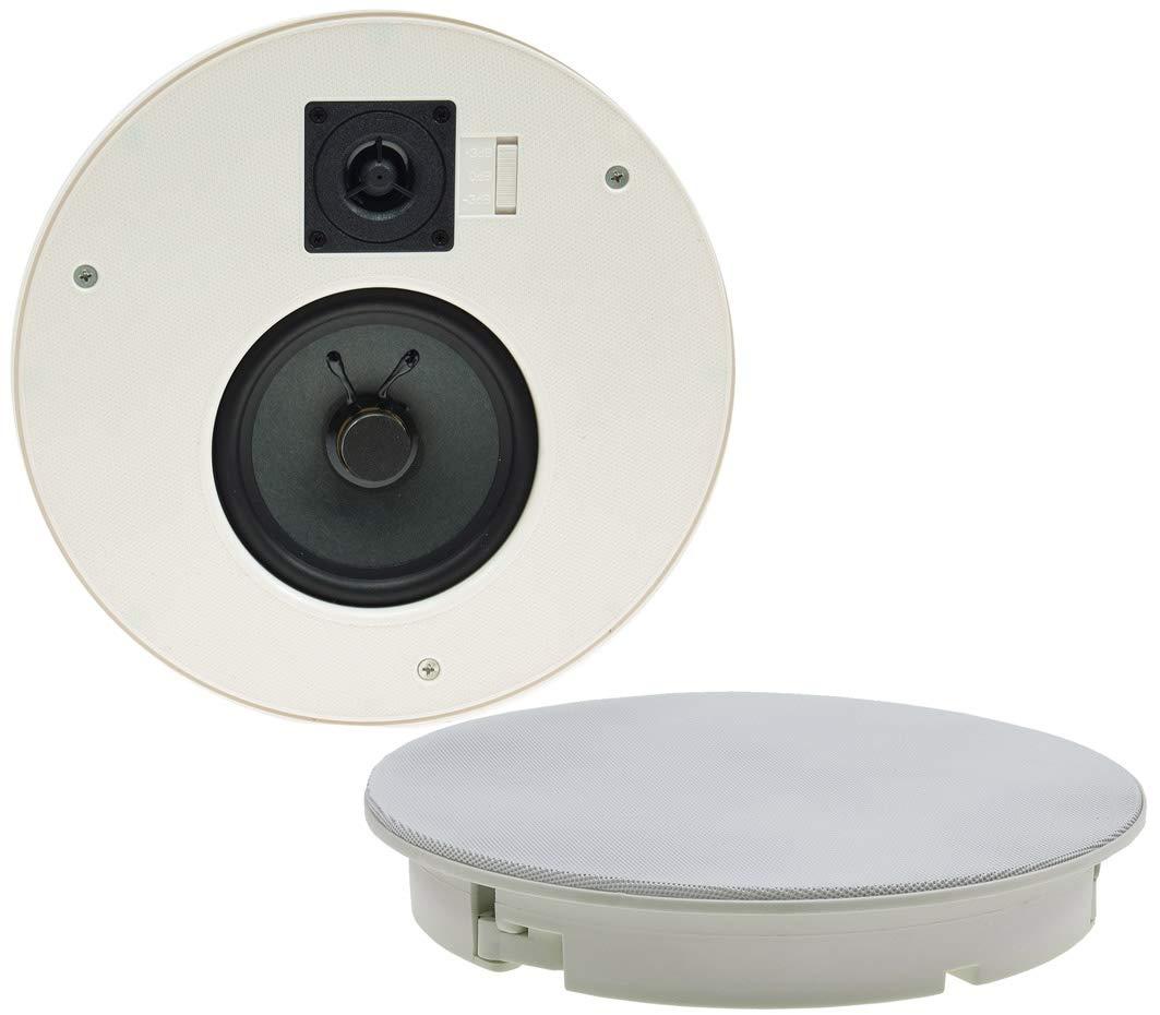 CTE-W - Altavoz empotrable para Techo y Pared (Rejilla Protectora de Metal, 8 ohmios, Montaje Sencillo (diámetro de 255 mm, 120 W, 2 vías), Color Blanco