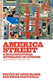 img - for America Street: A Multicultural Anthology of Stories (Revised Edition) book / textbook / text book