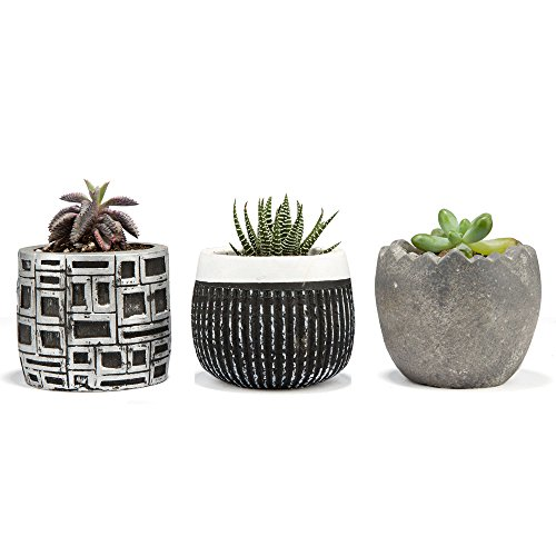 Concrete Round Planter - 7