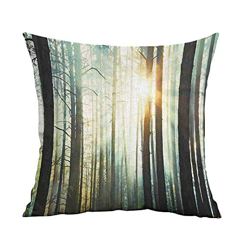 (warmfamily Breathable Pillowcase Country Fairy Foggy Forest Mist in The Woods Enchanted Wilderness with Sunbeams Image Cushion W14 xL14 Teal Brown)