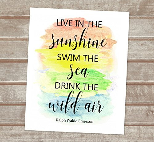 ralph waldo emerson live in the sunshine