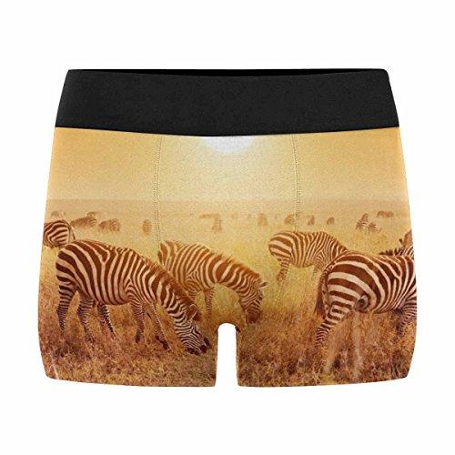 InterestPrint Mens Boxer Briefs Underwear Zebras Herd on Savanna at Sunset, Africa, Safari in Serengeti, Tanzania L by InterestPrint