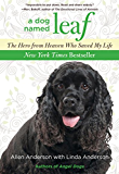 Dog Named Leaf: The Hero from Heaven Who Saved My Life (New York Times Best Seller)