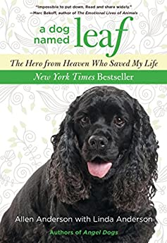 Dog Named Leaf: The Hero from Heaven Who Saved My Life (New York Times Best Seller) by [Anderson, Allen, Anderson, Linda]
