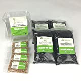Organic Wheatgrass Growing Kit - Value 4-Pack, Non-GMO, Nutrient Rich, Ready to eat in 5-7 days