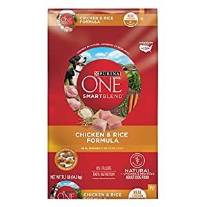 Purina ONE SmartBlend Natural Chicken & Rice Formula Adult Dry Dog Food - 31.1 lb. Bag