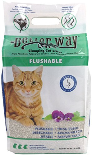 strong cat urine odor in litter box