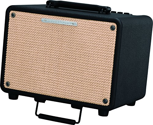 Amplifier Watt 30 Combo (Ibanez Troubadour T30 30W Acoustic Combo Amp Black)
