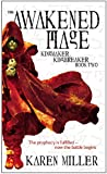 The Awakened Mage (Kingmaker, Kingbreaker Book 2)