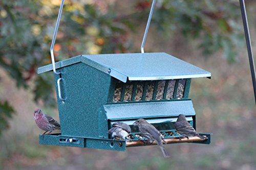 Woodlink 7533 Squirrel-Proof Feeder
