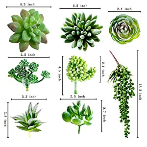 Dandevo 8 Pcs Unpotted Fake Succulent Plants Assorted Realistic Artificial Faux Plastic Silk Greenery Stems in Bulk String of Pearls Hanging Plant for Terrarium Home Wall Decor Large and Small 2