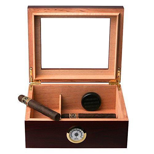 The 8 best humidors