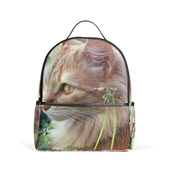 Gatto Animale Zaino per Donne Ragazze Borsa Moda Borsa Bookbag Bambini Viaggio College Casual Zaino Ragazzo Prescolare… 1 spesavip
