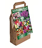 Green Brokers 101 Promo Bulb Pack Collection - Different Summer Flowering Varieties (101 Bulbs)