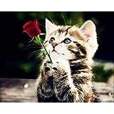 ししゅう糸 クロスステッチ刺繍キット 布地に図柄印刷 子猫の願い