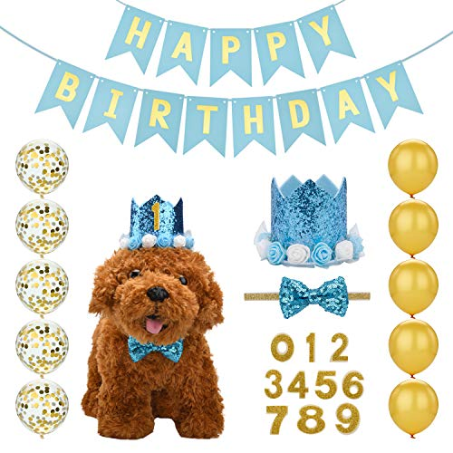 Mogoko Cat Dog Birthday Party Supplies, Puppy Pet 1st Birthday Hat Banner and Balloon Set for Decoration