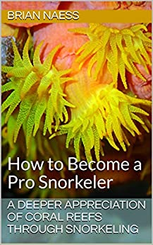 A Deeper Appreciation of Coral Reefs Through Snorkeling: How to Become a Pro Snorkeler by [Naess, Brian]