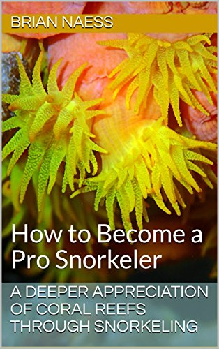 A Deeper Appreciation of Coral Reefs Through Snorkeling: How to Become a Pro - Diving Coral Scuba Reefs
