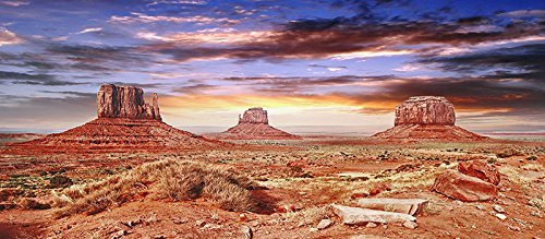 Reptile Habitat, Terrarium Background, Cool Desert Sky - 18 Tall'' X 36 Wide'' by BNS