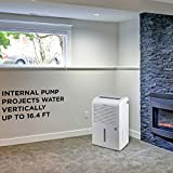 Ivation 4,500 Sq Ft Energy Star Dehumidifier with