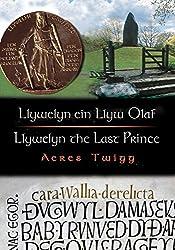 Llywelyn Ein Llyw Olaf/Llywelyn the Last Prince (Cyfres Cip Ar Gymru / Wonder Wales)