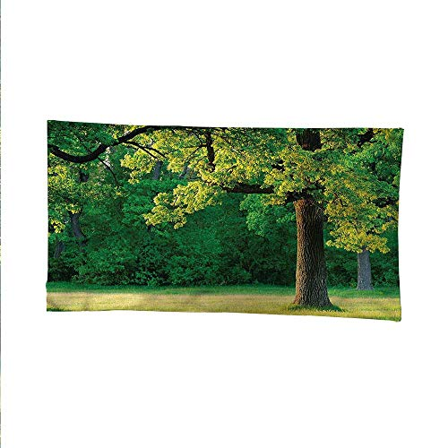 Tree of Lifecool tapestrytapestry for wallFresh Oak Leaves Park 80W x 60L Inch