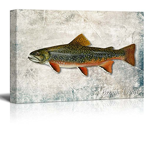Green Brook Trout Fish Illustration on a Textured Background
