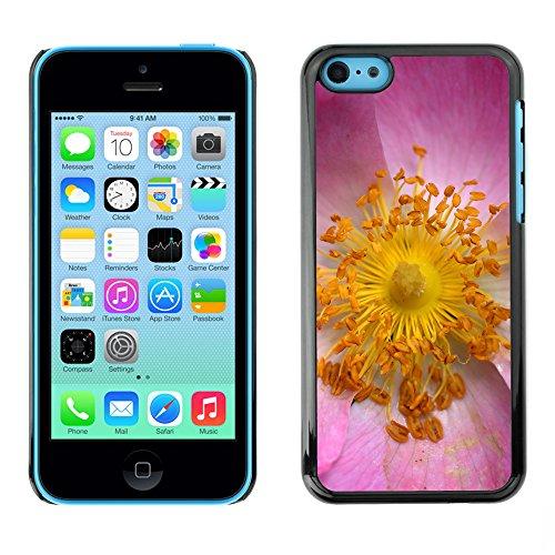 Premio Sottile Slim Cassa Custodia Case Cover Shell // F00020569 noyau de fleurs // Apple iPhone 5C