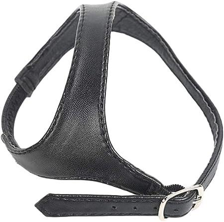 SUPVOX Correas para zapatos de tacon removibles desmontables para zapatos tacones altos zapatos planos zapatos de cuña (Negro mate)