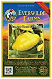 Everwilde Farms - 40 Scallop Yellow Bush Summer Squash Seeds - Gold Vault Jumbo Seed Packet