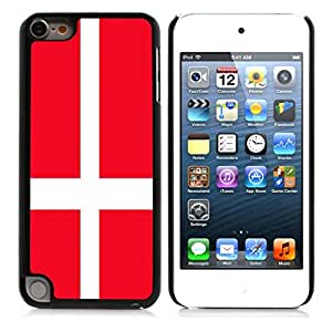 Denmark Hard Plastic and Aluminum Back Case FOR Apple ipod touch 5 5TH 5G