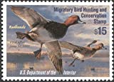 Scott RW71 $15.00 Snow Geese Federal Duck Stamp Mint Very Fine. Never Been Hinged.