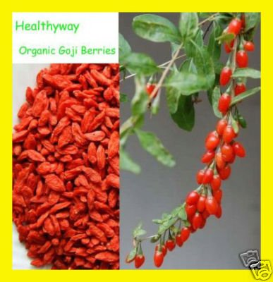 NutritionSource Healthyway Organic Goji Berries Raw Superfood 1 Lb Wolfberry