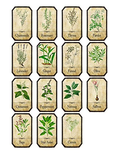 Thorpe Signs Set of 15 Vintage Style Apothecary Spice Herb Labels Set 1 Sticky Backed Vinyl Water and Oil Proof