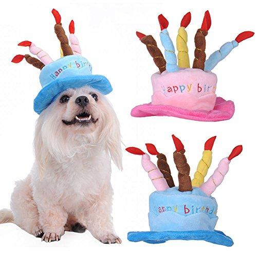 pet-happy-birthday-hat-design-party-teddy-poodle-for-dogs-parties-halloween-fancy-dress-ball-birthda