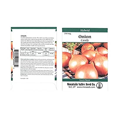 Candy Hybrid Onion Garden Seeds - Non-GMO, Vegetable Gardening Seeds
