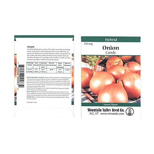 Cheap Candy Hybrid Onion Garden Seeds - 250 Mg Packet - Non-GMO, Vegetable Gardening Seeds for cheap