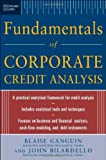 img - for Standard & Poor's Fundamentals of Corporate Credit Analysis by Blaise Ganguin (2004-12-30) book / textbook / text book