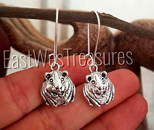 EWT stainless steel hamster Guinea pig dangle drop silver earrings/ Guinea pig jewelry