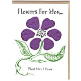 Flowers For You Blue 3 pack