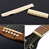 TecUnite Acoustic Guitar Bridge Pins Puller Pulling Remover Extractor Tool with Guitar Saddle Nut and 12 Pack Guitar Bridge Pins