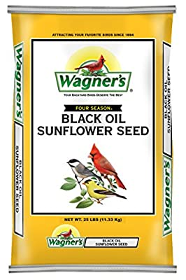 Wagner's 76027 Black Oil Sunflower from Wagners