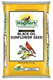 Wagner's 76027 Black Oil Sunflower, 25-Pound Bag: more info