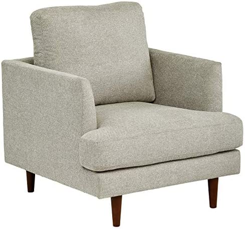 Amazon Brand Rivet Goodwin Modern Living Room Accent Chair