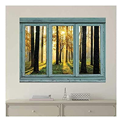 Vintage Teal Window Looking Out Into The Forest...