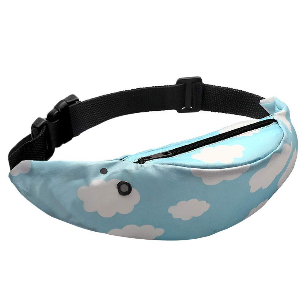Todaies Colorful Waterproof Waist Packs, Travel Fanny Pack Mobile Phone Waist Pack Belt Bag (G, As Shown)