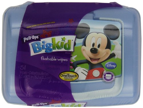 pull-ups-big-kid-flushable-wipes-with-onetouch-dispensing-container-51-count