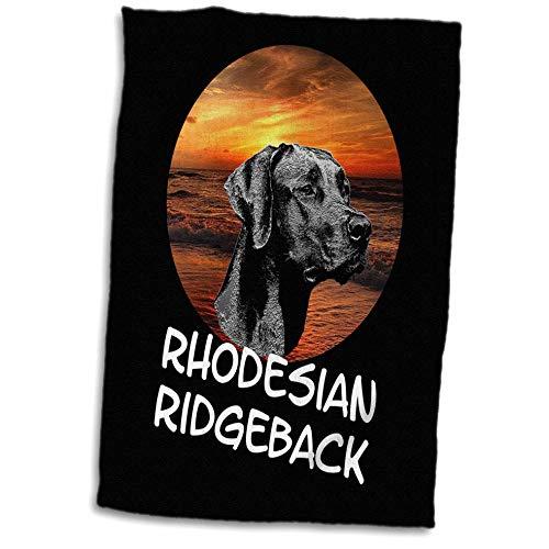 - 3dRose Sven Herkenrath Dogs - Rhodesian Ridgeback Dogs with Sunset Holiday Beach - 15x22 Hand Towel (TWL_306946_1)