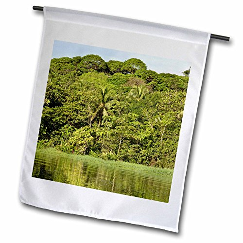 KIKE CALVO Rainforest Costa Rica Collection  - Landscape - Tortuguero National Park - 12 x 18 inch Garden Flag (fl_234121_1)