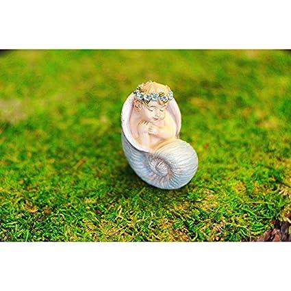 Amazon.com: Jardín de hadas en miniatura encantador ...